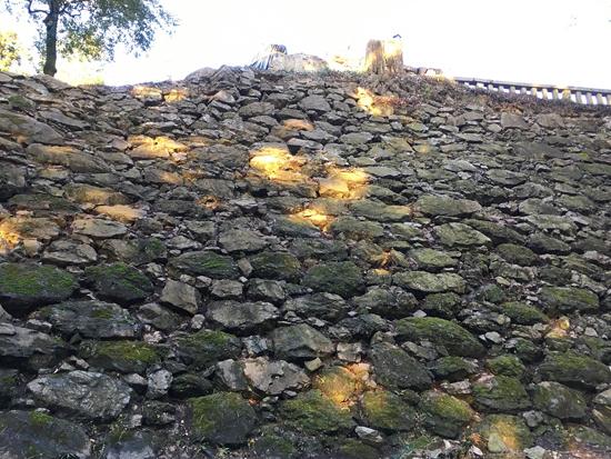 唐沢山城跡整備